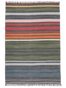 Rainbow Stripe - Szary Dywan 140X200 Nowoczesny Tkany Ręcznie Ciemnoszary/Zielony/Oliwkowy (Bawełna, Indie)