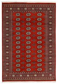 Pakistański Bucharski 2Ply Dywan 166X240 Orientalny Tkany Ręcznie Czarny/Ciemnoczerwony/Ciemnobrązowy (Wełna, Pakistan)